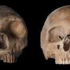 Analise-de-dente-encontra-vantagem-dos-humanos-sobre-os-Neandertais